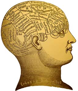 Psychology of Marketing Real Estate image of parts of the brain