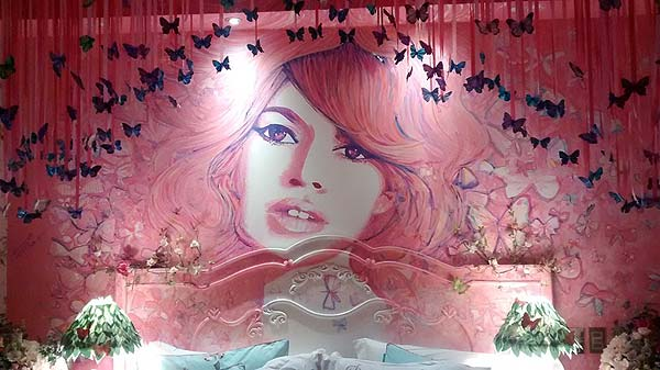 Photo of a themed bedroom